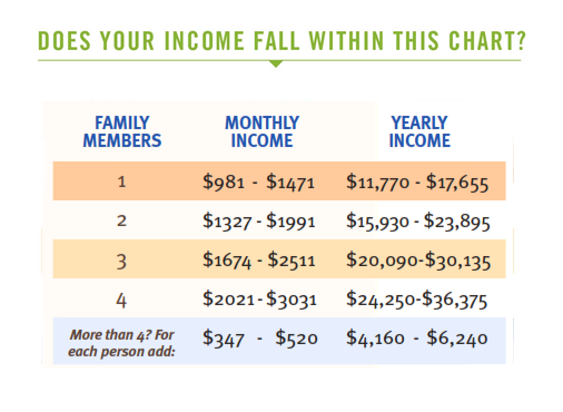 HealthConnect Income Chart